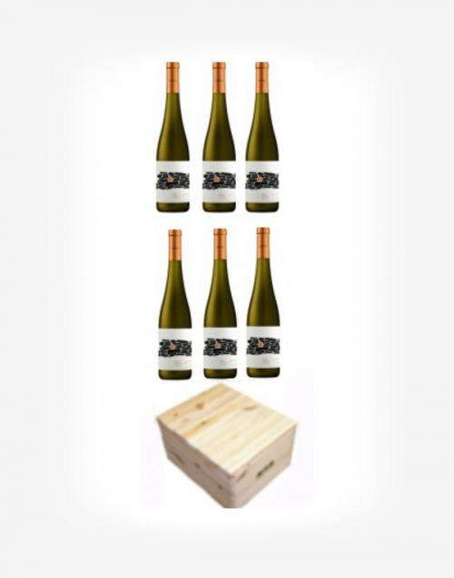 Darčekové balenie vína Vinárstva Rariga v masívnom drevenom boxe 6fl.